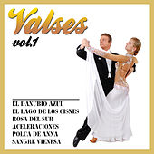 Valses  Vol. 1 by Various Artists