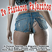 Te Pintaron Pajaritos by Various Artists