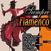Siempre Flamenco by Various Artists