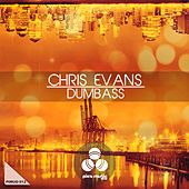 Dumbass by Chris Evans