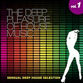 The Deep Pleasure of House Music, Vol. 1 (Sensual Deep House Selection) by Various Artists