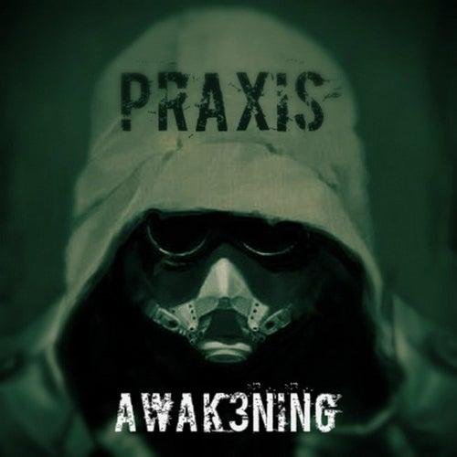 Awakening by Praxis