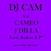 Love Junkee by DJ Cam