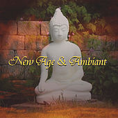 New Age & Ambient Songs by Various Artists