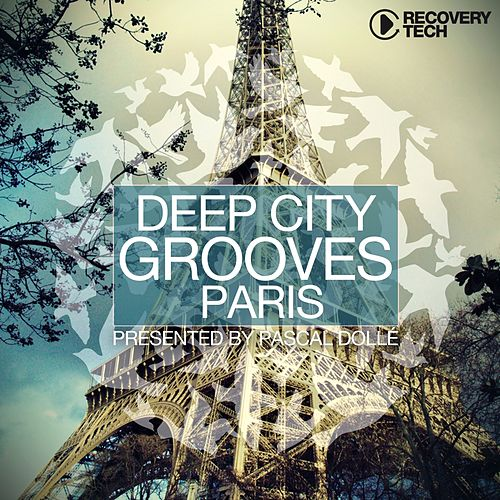 Deep City Grooves Paris by Various Artists