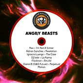 Angry Beats by Various Artists