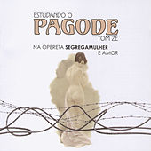 Estudando o Pagode by Tom Zé