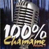 100% Chamamé - Volume 1 by Grupo Estilo Nativo