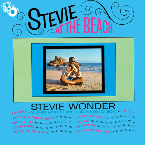 Stevie At The Beach by Stevie Wonder