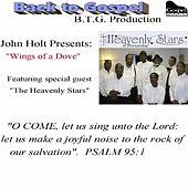 Wings of a Dove (feat. the Heavenly Stars of Pensacola) by John Holt
