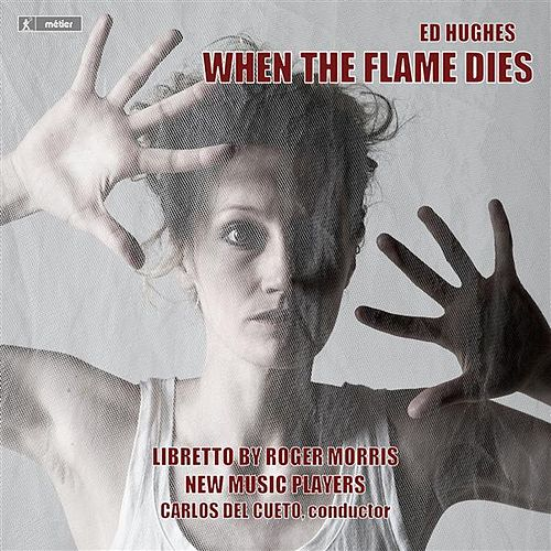 Hughes: When the Flame Dies by Edward Grint
