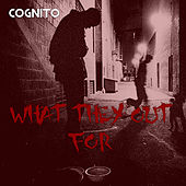 What They Out For by Cognito