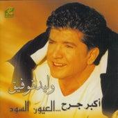 Akbar Gereh by Walid Tawfic