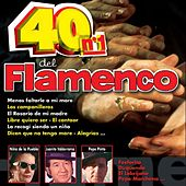 40 No. 1 del Flamenco by Various Artists