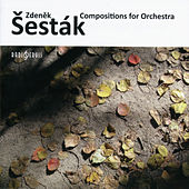 Zdeněk Šesták - Composition for Orchestra by Various Artists