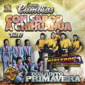 Puras Cumbias Con Sabor a Chihuahua, Vol. 2 by Various Artists