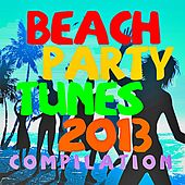 Beach Party Tunes 2013 by Various Artists