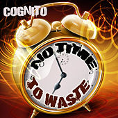 No Time to Waste by Cognito