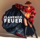 Flamenco Feuer (Die 50 heissesten Zigeuner Titel des Flamencos) by Various Artists