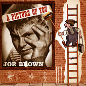 A Picture of You by Joe Brown