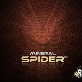 Spider by Mineral