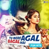 Tu Mere Agal Bagal Hai - Fun Hits by Various Artists