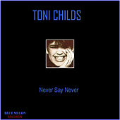 Never Say Never by Toni Childs