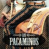 Los Pacaminos by Los Pacaminos
