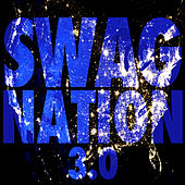Swag Nation 3.0 von Various Artists