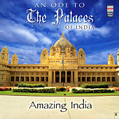 An Ode To The Palaces Of India by Taufiq Qureshi