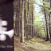 From A Distant Shore by Peter Miller