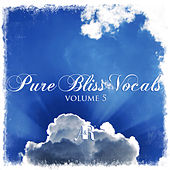 Pure Bliss Vocals Volume 5 - EP by Various Artists
