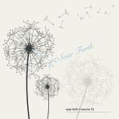 Soar Forth, Vol. 10 by Various Artists