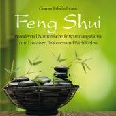 FENG SHUI : Harmonische Entspannungsmusik by Gomer Edwin Evans