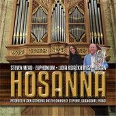 Hosanna by Steven Mead
