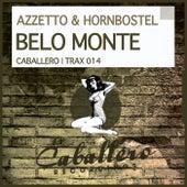 Belo Monte by Christian Hornbostel