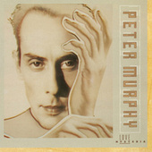 Love Hysteria (Expanded Edition) by Peter Murphy