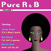 Pure R&B, Vol. 1 by Various Artists