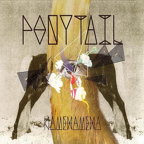 Kamehameha by Ponytail