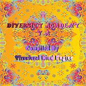 Diversity Academy (Compiled by Structural Mind Engine) by Various Artists