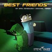 Best Friends (Minecraft Dubstep) by Steve Duzz