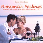 Romantic Feelings: Wonderful Music for a Spezial Moment by Gomer Edwin Evans