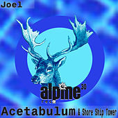 Acetabulum / Shore Ship Tower by Joel