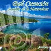 Bali Curación Sonidos de la Naturaleza by Andreas