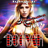 Booyah: Tribute to Showtek, Klangrussell (Compilation Hits Radio 2014) by Various Artists
