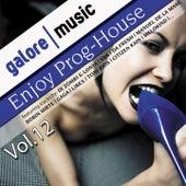 Enjoy Prog-House, Vol. 12 by Various Artists