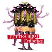 Erdbeben Remix by Fettes Brot
