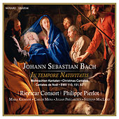 J.S. Bach: In tempore Nativitatis - Christmas Cantatas BWV 110, 151, 63 by Various Artists