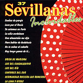37 Sevillanas Inolvidables by Various Artists