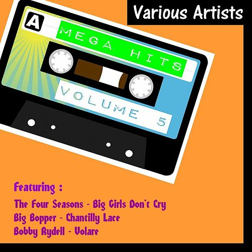Mega Hits, Vol. 5 by Various Artists